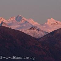 Alpenglow on Fresh Snow