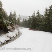 Harbor Mountain Road