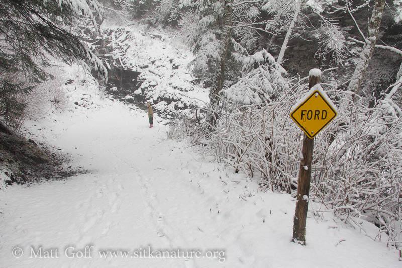 Heart Lake Trail Stream Crossing