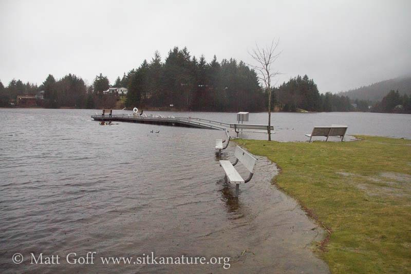 Swan Lake Peninsula