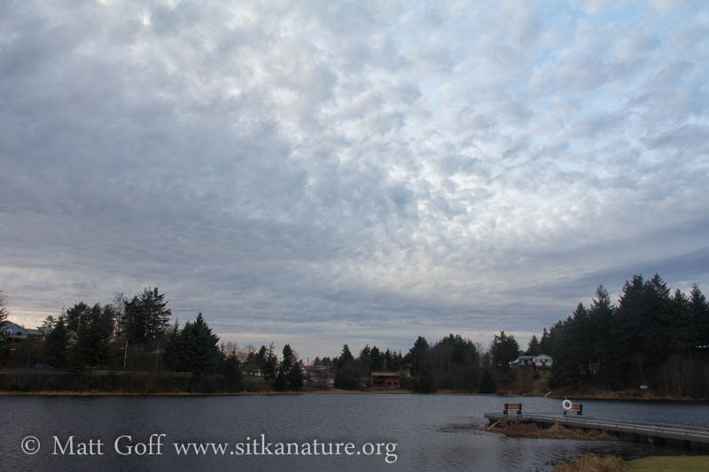 Clouds over Swan Lake