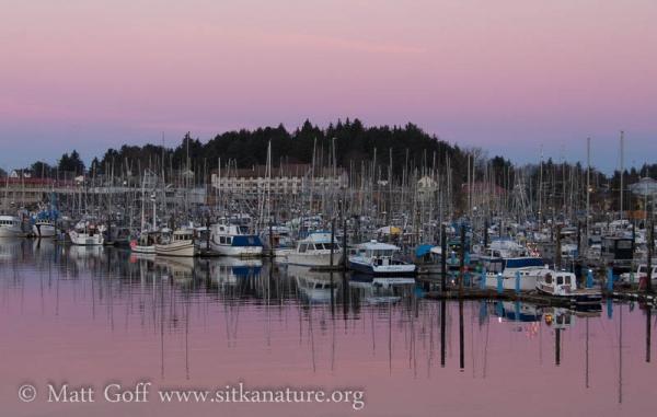 Crescent Harbor at Sunrise