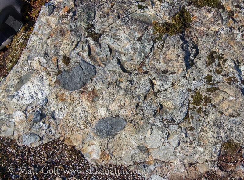 Exposed Rock on Peak 2550