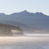 Lingering fog on Jamestown Bay