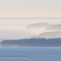 South Kruzof Coastline Haze