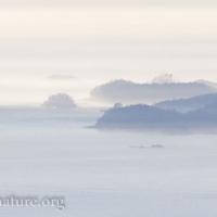 Island South of Sitka Sound