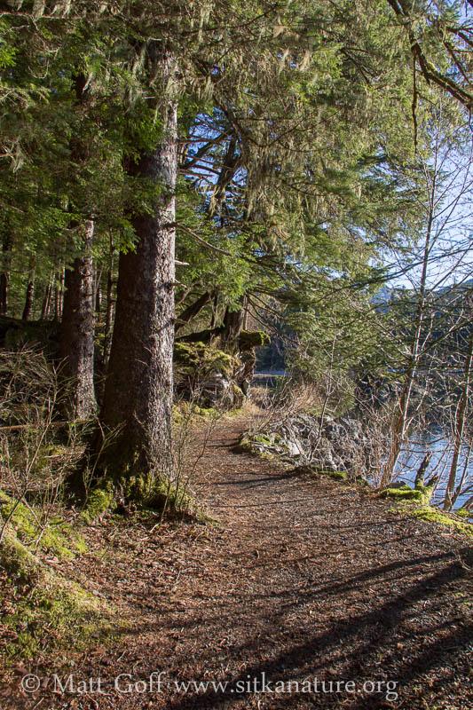 Mosquito Cove Trail