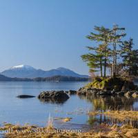 Starrigavan Highwater Islet