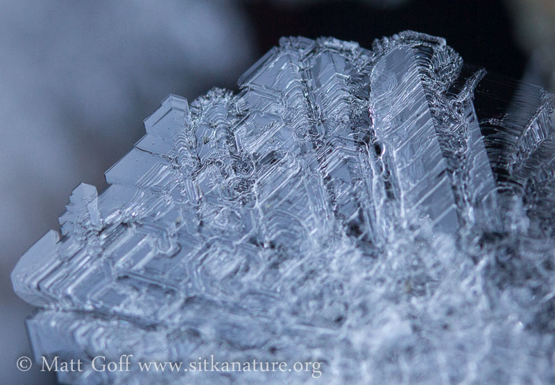 Large Frost Crystals