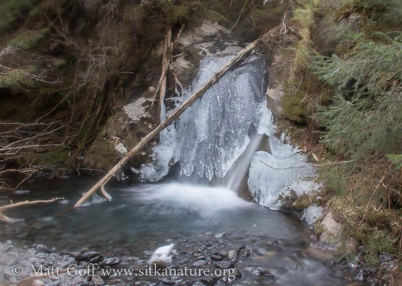 Herring Cove Creek Cascade