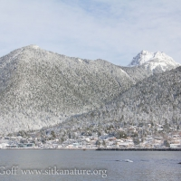 Snow Covered Harbor Mountain