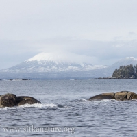 Mt. Edgecumbe from John Brown's Beach