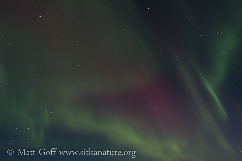 Red Aurora and Pleiades