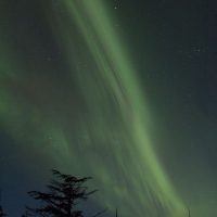Auroral Bands from Harbor Mountain Road