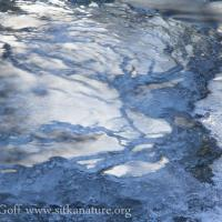 Indian Rivier Ice