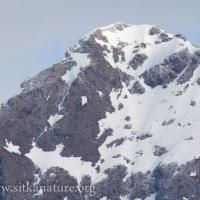 Peak of the North Sister