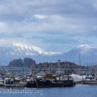 Eliason Harbor and Mt. Edgecumbe