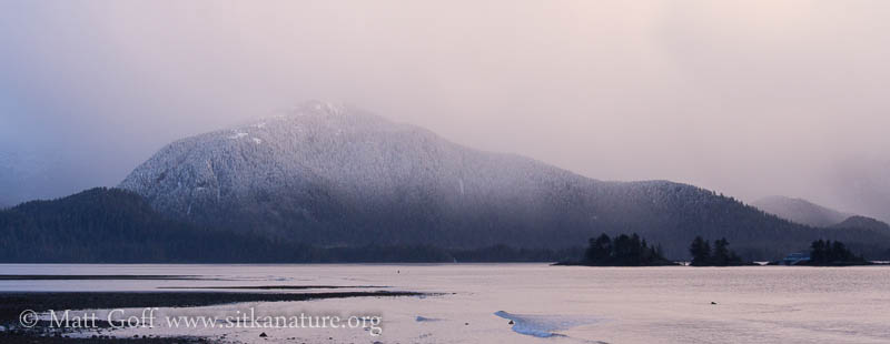 Unnamed Mountain (Peak 2225)