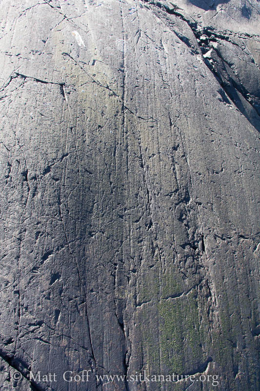 Glacial Striations at Alice Island