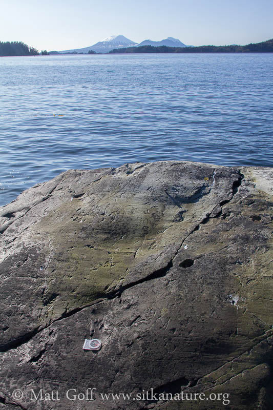 Glacial Striations along Halibut Point Road