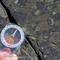 Glacial Striations at John Brown's Beach