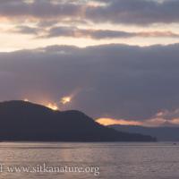 Sun Setting behind Middle Island