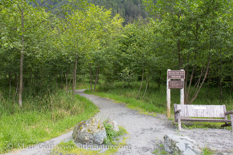 Start of Herring Cove Trail