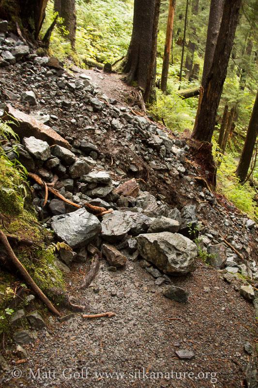 Herring Cove Trail Washout