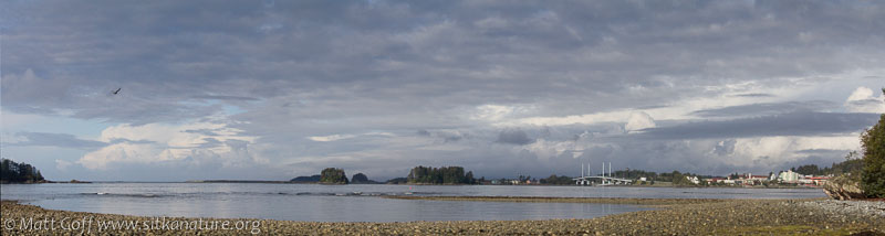 View from the Beach at Totem Park