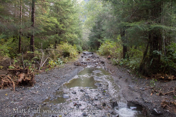 Washed out ATV Trail