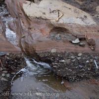 Mixed Rock Layer
