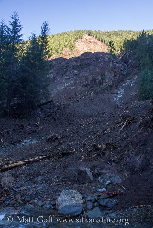 Up Valley Side of Slide