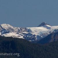Alpine Glacier with Fresh Snow