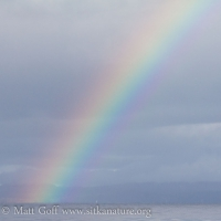 Rainbow and Whale Spouts