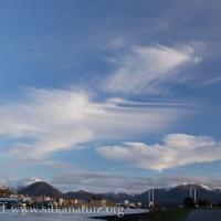 Wind Swept Cirrus Clouds