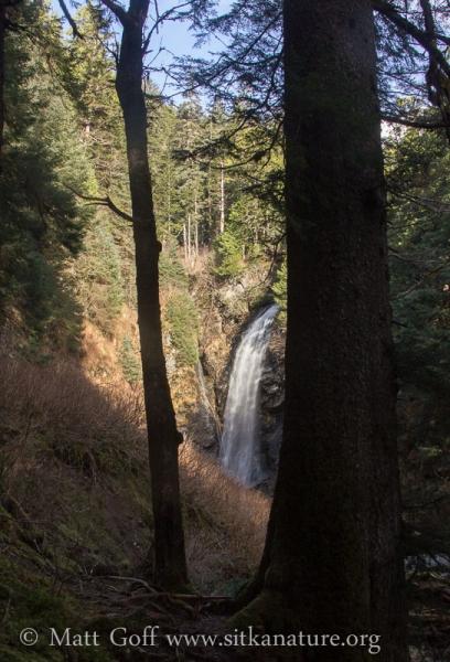 Indian River Falls