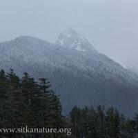 Snow on Verstovia