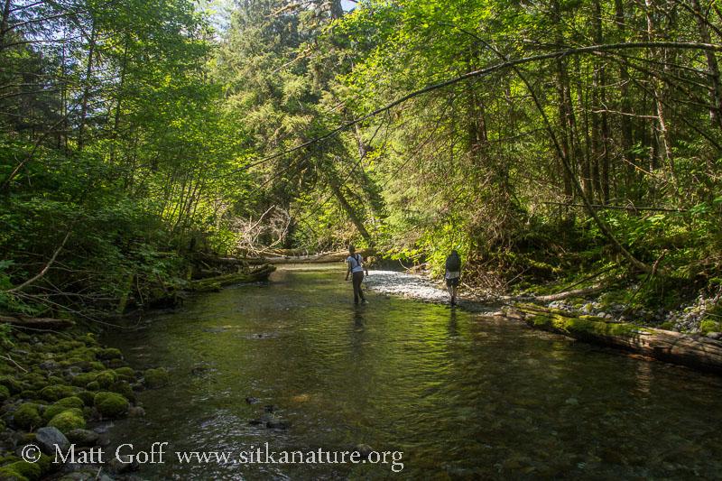 Walking Indian River
