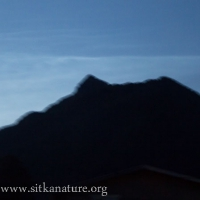 Noctilucent Clouds over Verstovia