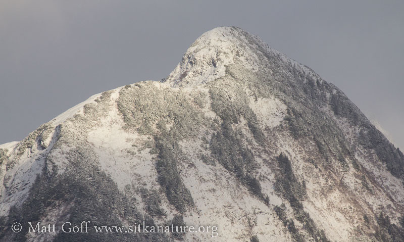 Fresh Snow on Middle Sisters