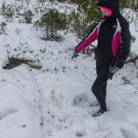 Rowan and a River Otter Trail
