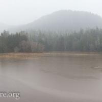 Estuary Flood Panorama