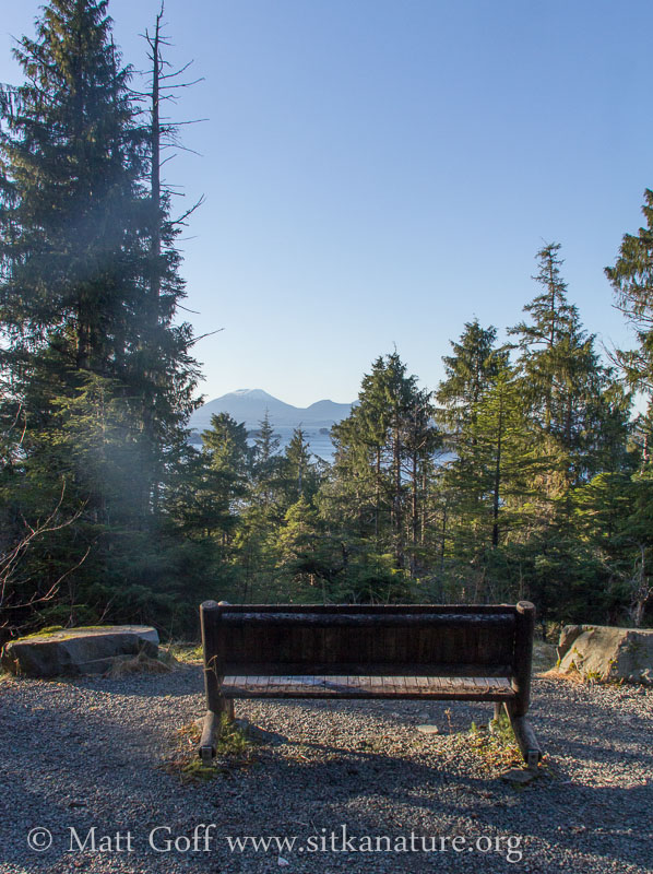 Cross Trail Bench Viewpoint