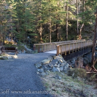Bridge over Cascade Creek