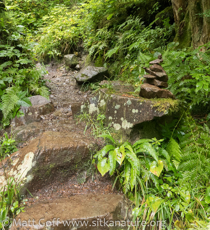 Trailside Cairn