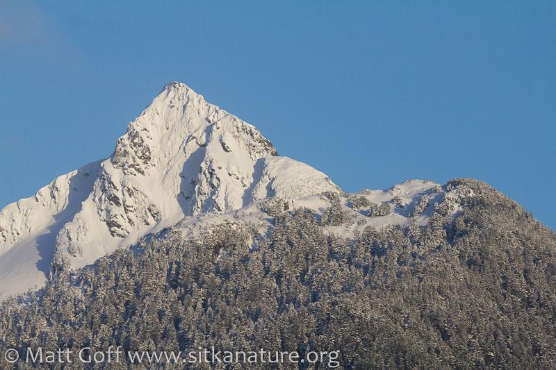 Snow-covered Verstovia
