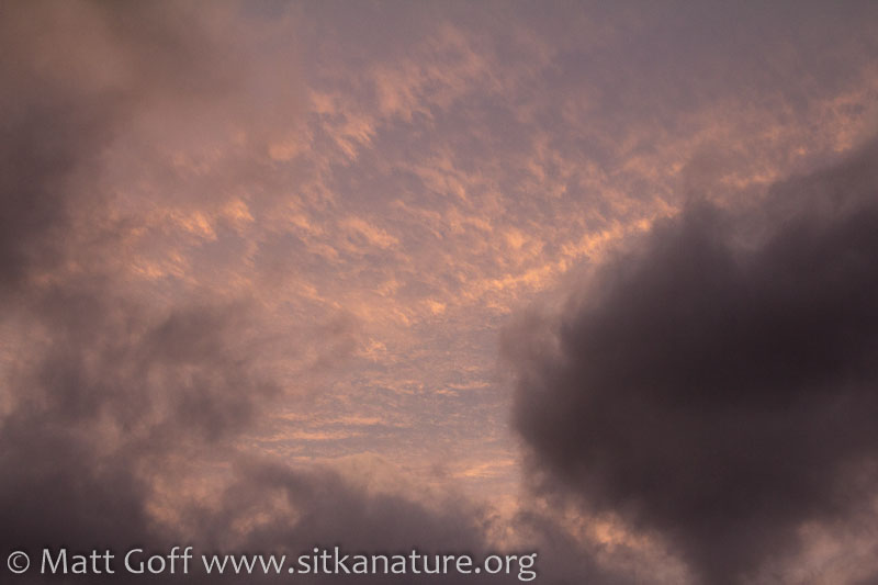 Late Afternoon Clouds