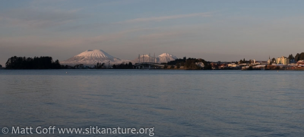 Morning View of Mt. Edgecumbe