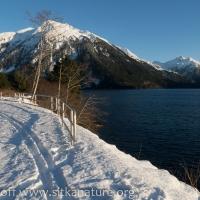 Ski Tracks in the Snow