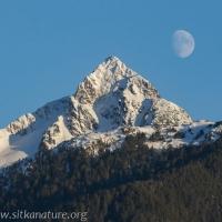 Moon over Verstovia